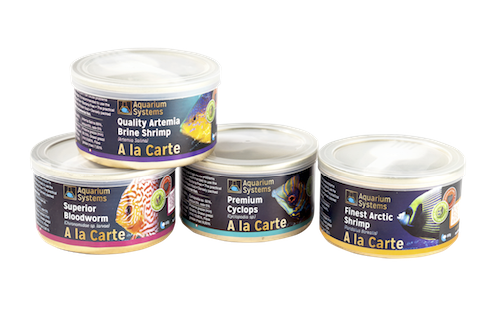 Not freeze dried fish foods, but proper wet foods, in a tin!