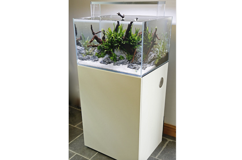 On Test Evolution Aqua As600 Tank And Cabinet Practical Fishkeeping