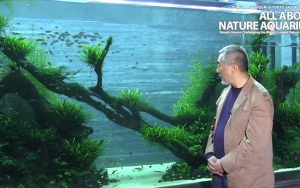 Aquascaping Pioneer Takashi Amano Dies Practical Fishkeeping