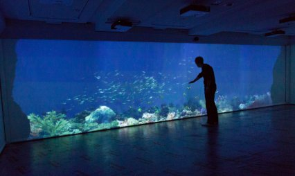 Video: Virtual aquarium where the fish will play with you