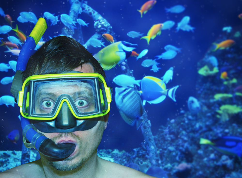 Strike a pose with your fish for NOAH's photo competition.