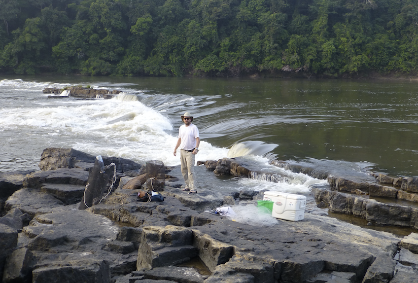 John Sullivan, Curatorial Affiliate in the Cornell University Museum of Vertebrates, stands with his fish traps at the 'chute' or falls of Doumé on the Ogooué River in Gabon, Africa.
