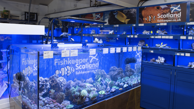 The Melville aquatic store has been given a complete revamp since being taken over by Fishkeeper Scotland.
