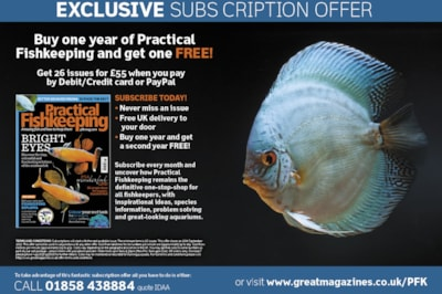 Save up to 50% a year when you subscribe to Practical Fishkeeping magazine today.