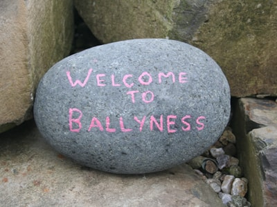Welcome to Ballyness Caravan Park