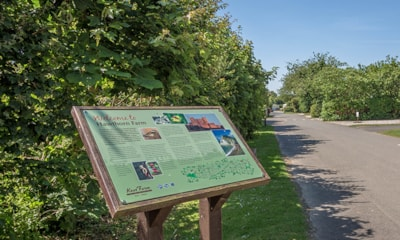 Enjoy coastal walks from the park