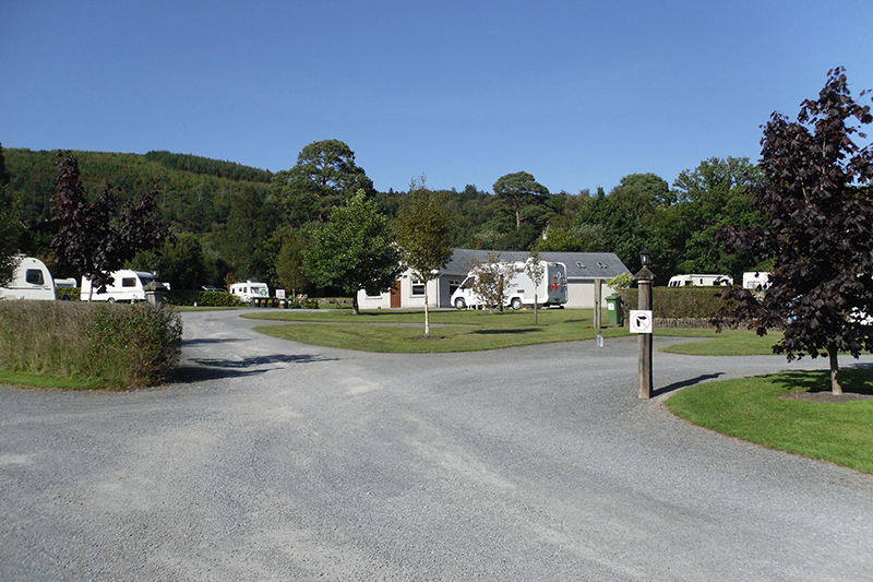 Cashel Campsite - Loch Lomond | Camping in the Forest
