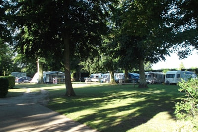 Woodland setting for caravan and motorhome pitches