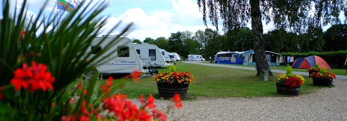 South Lytchett Manor Caravan & Camping Park