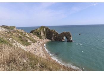 Delve into Dorset