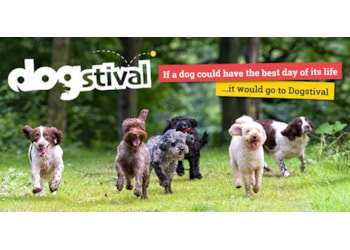 New boutique festival for dogs in the New Forest