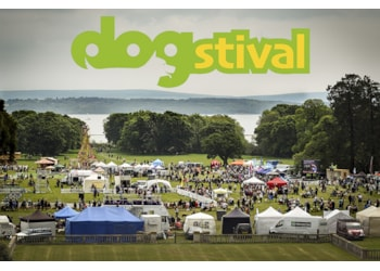 Dogstival returns for 2020 - a weekend of tail-wagging fun!