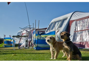 Cornish Campsite Joins The 'Elite' of UK Campsites