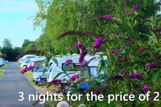 3 nights for the price of 2 offer