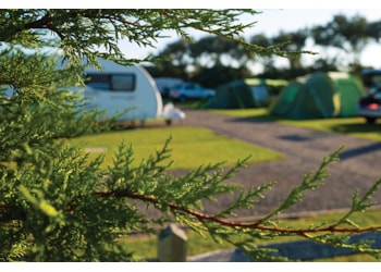 Spotlight on: Warner Farm Camping & Touring Park, West Sussex