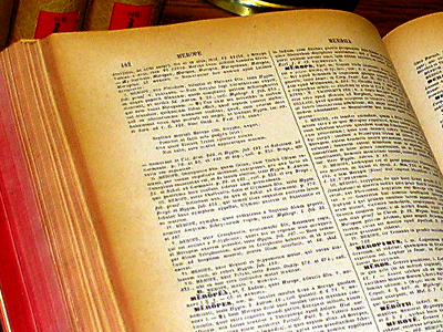 Image of a dictionary