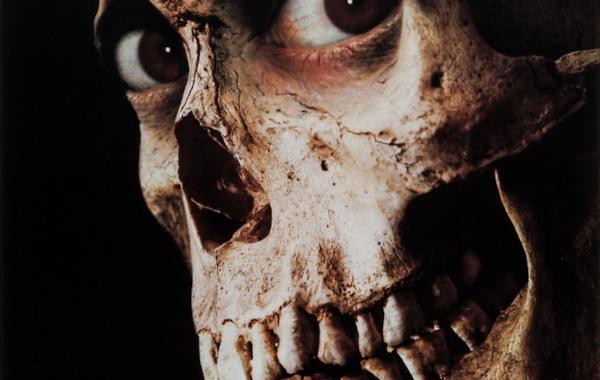 evil-dead-2-31216.jpg