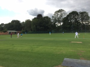 Warners Charity Cricket match