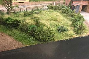 model railway hedge types