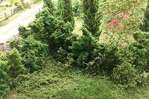finished model hedges