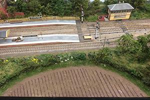 plants on model railway field