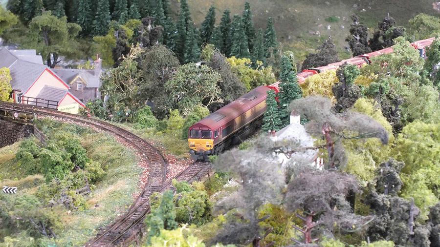 Class 66 EWS livery log train
