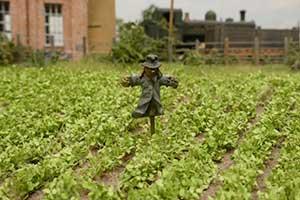 scarecrow in model railway field
