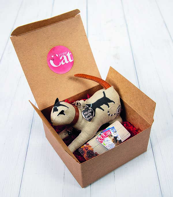 Free Gift: Your Cat Christmas Gift Box
