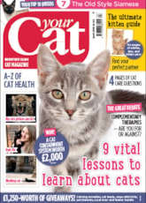 Your Cat April 18 Cover
