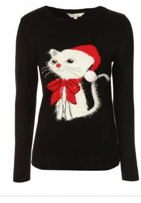 10 Christmas Jumpers For Cat Lovers Your Cat