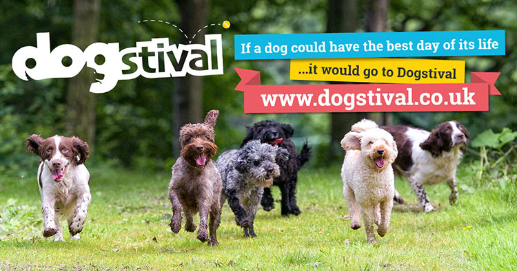 Win a family ticket to Dogstival