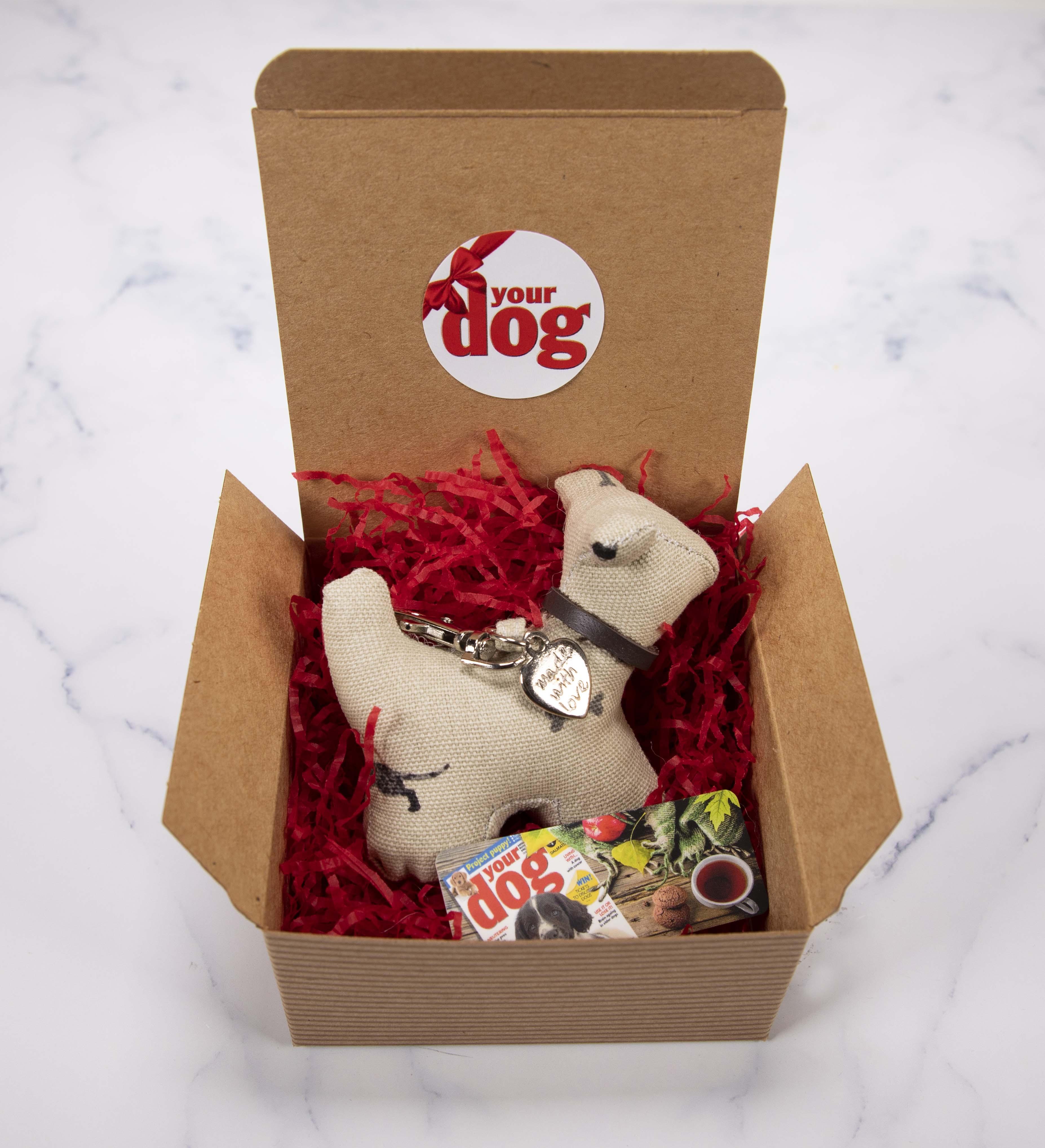 Free Gift: Your Dog Christmas Gift Box