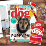 Free Gift: Your Dog Subscription Gift Pack