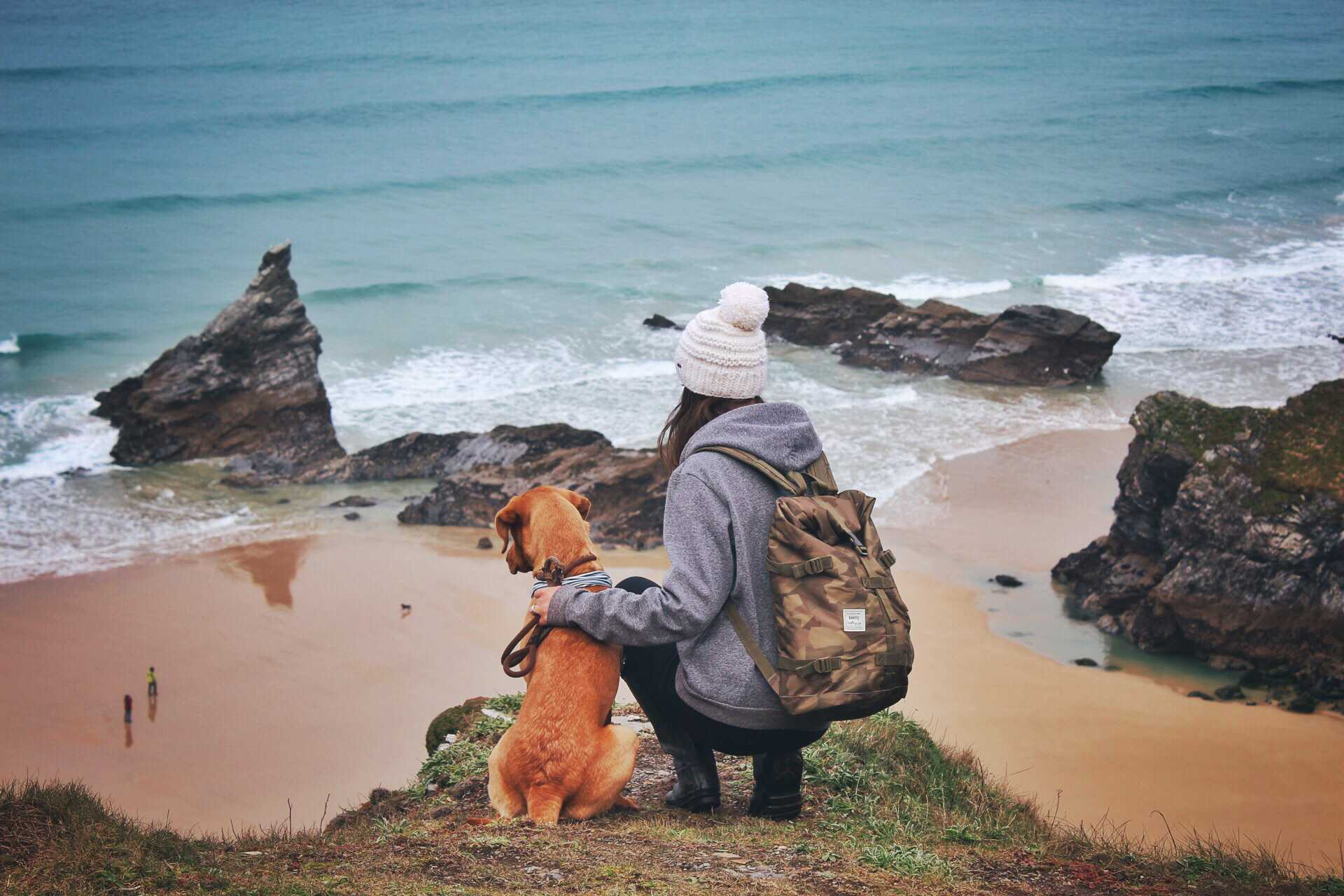 dog friendly holidays cornwall