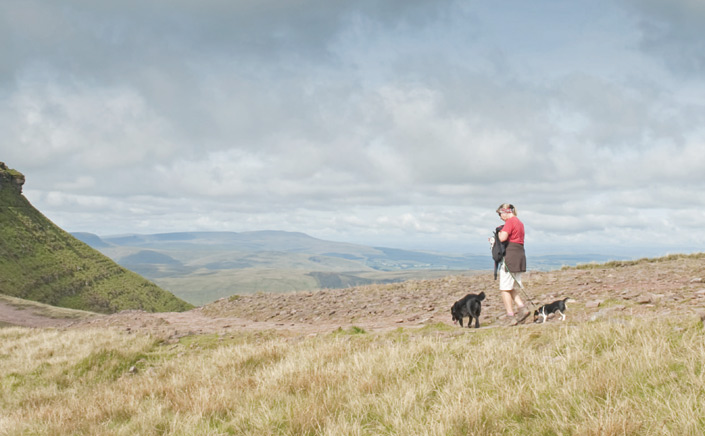 Dog-friendly Brecon Beacons