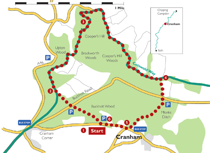 Cranham walk route
