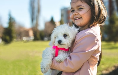 Can I stop my dog barking and my children?
