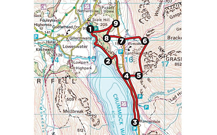 lanthwaite_wood_map.jpg