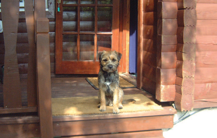 Dog-friendly Loch Lomond