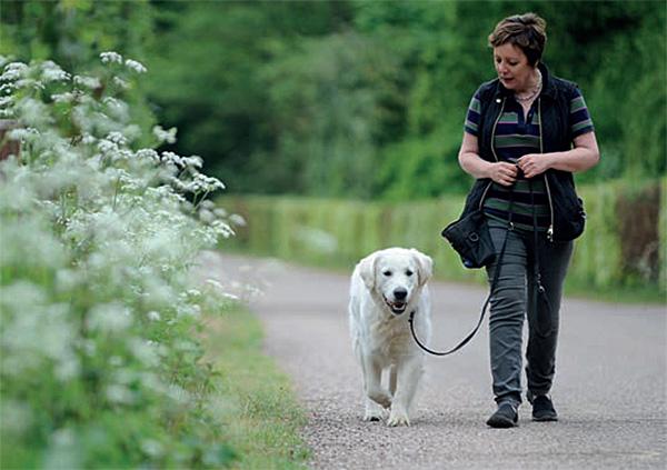 Teach your dog loose-lead walking