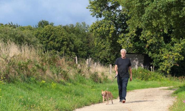 How to make your dog walks rewarding
