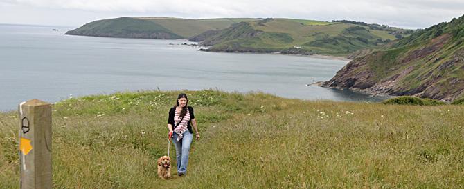 south_west_coastal_path.jpg